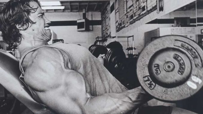 Best Steroids for Strength