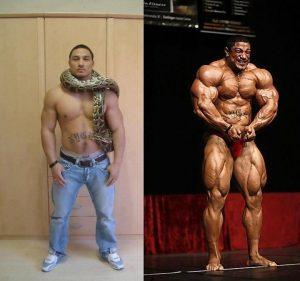steroid transformation