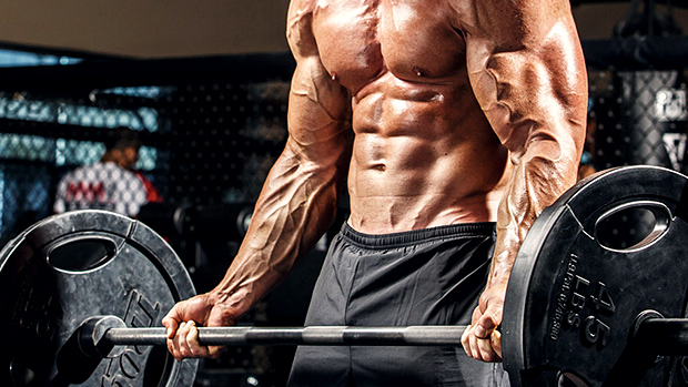 Full body – features of the training program