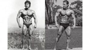 Frank Zane Bodybuilders