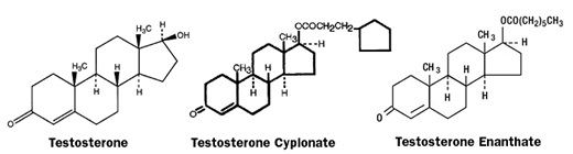 testosterone cypionate quad injection sites